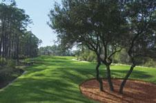 Snug Harbor Golf Image