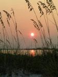 Snug Harbor Sunset Image